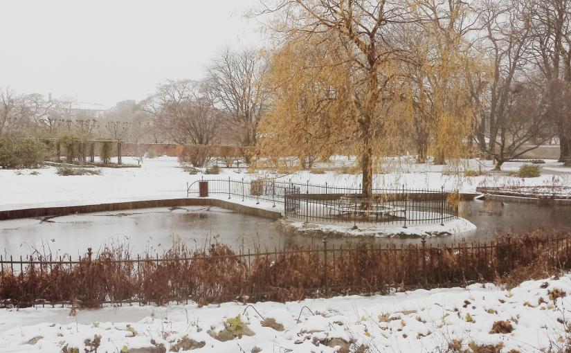 La primera nieve del otoño enCopenhague