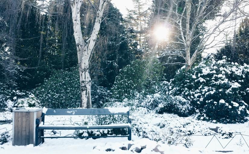 Domingo de sol y nieve enFrederiksberg