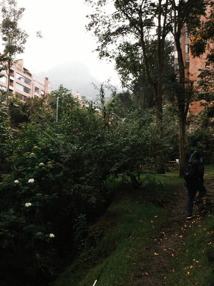 Quebrada la Vieja en Bogotá