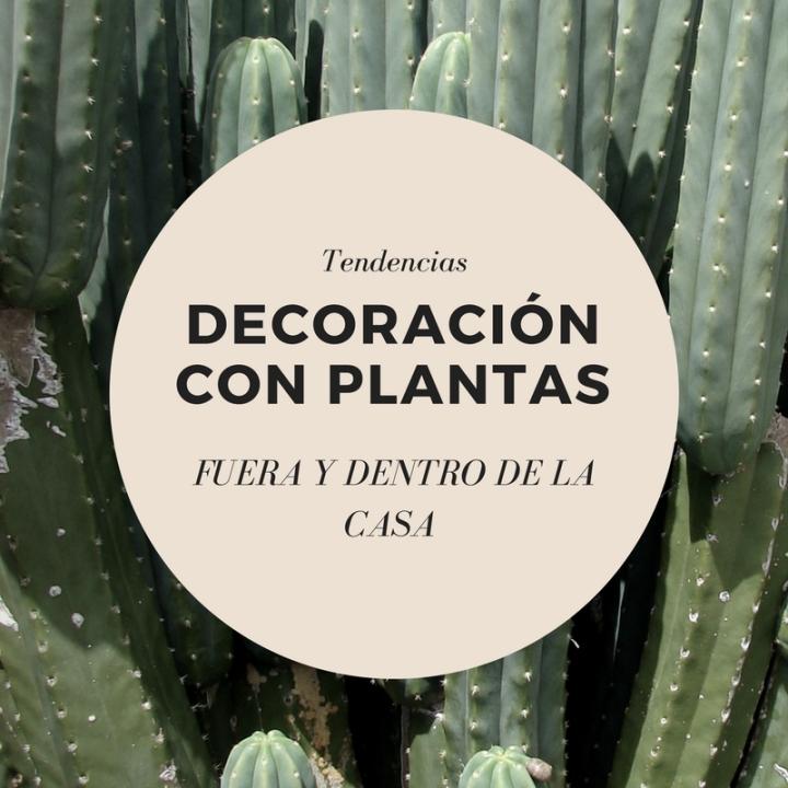 Decoración con plantas: dentro y fuera de lacasa